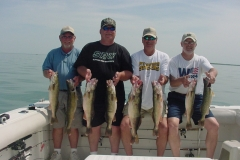 NICE CATCH OF LAKE ERIE WALLEYES